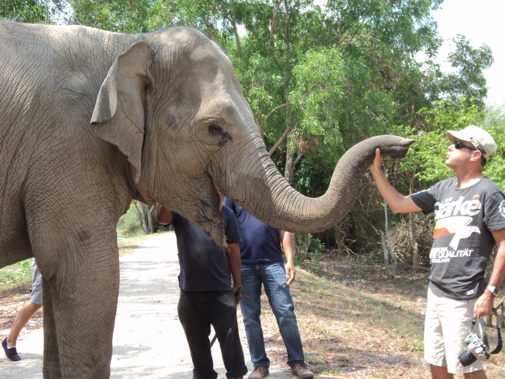 Phnom Tamao Wildlife Rescue Center