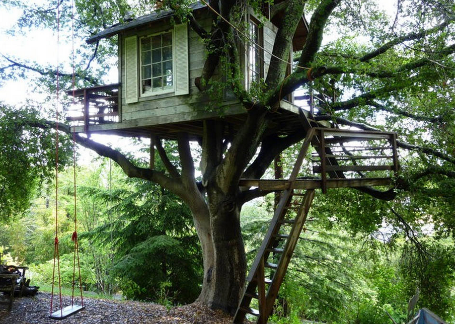 treehouse-airbnb